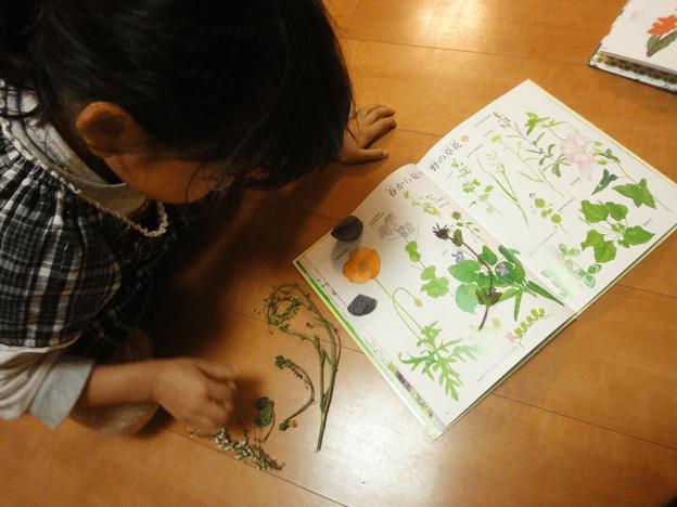 自然体験プログラム